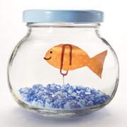 Barattolo di vetro trasformato in piccolo acquario ornamentale